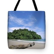 Driftwood On A Tropical Beach Bordered Tote Bag