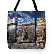 Driftwood Triptych Tote Bag