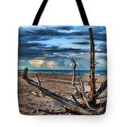 Driftwood V2 Tote Bag