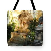 Drinking Fountains For Sale - Broadway Tote Bag