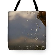 Dripping Fountain Tote Bag