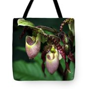 Drippy Lady Slipper Orchids Tote Bag