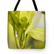 Drop Of Dew Tote Bag