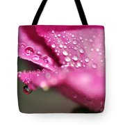 Droplet On Rose Petal Tote Bag