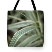 Drops Of Grass Symmetry Tote Bag