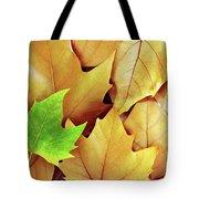 Dry Fall Leaves Tote Bag by Carlos Caetano