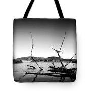Dryden Lake New York Tote Bag by Paul Ge