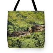 Duck Dinner Tote Bag
