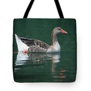 Duck On Water Tote Bag