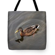 Duck Swimming In Clear Water St Tote Bag