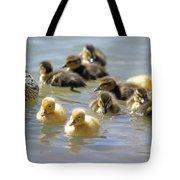 Ducklings 09 Tote Bag