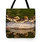 Ducklings Catch Some Rays Tote Bag
