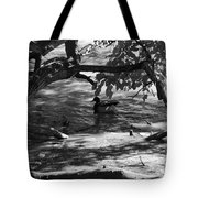 Ducks In The Shade In Black And White Tote Bag