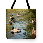 Ducks On The Water Tote Bag
