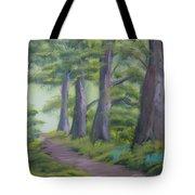 Duff House Path Tote Bag