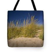 Dune And Beach Grass On Lake Michigan No.969 Tote Bag