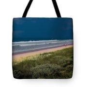 Dunes And Ocean Divided Tote Bag