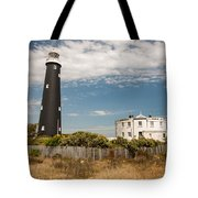 Dungeness View Tote Bag