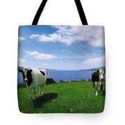 Durrus, Sheeps Head, Co Cork, Ireland Tote Bag