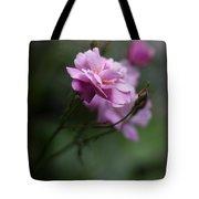 Dusk Light Roses Tote Bag