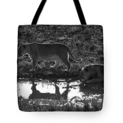 Dusk Reflections Tote Bag