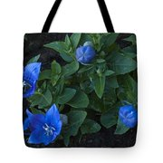 Dwarf Balloon Flower Platycodon Astra Blue 2 Tote Bag