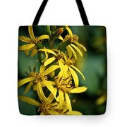 Dwarf Golden Ray Tote Bag