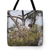 Eagle And Babies Tote Bag