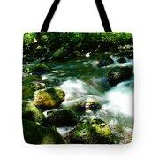 Eagle Creek  Tote Bag