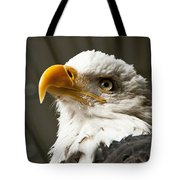 Eagle Eye Tote Bag