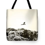 Eagle Flying Above The Forest Tote Bag