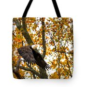 Eagle In Autumn Tote Bag