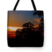 Eagle Lookout Tote Bag