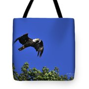 Eagle Over The Tree Top Tote Bag