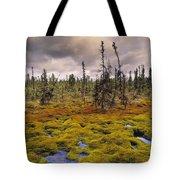 Eagle Plains, Yukon Territory, Canada Tote Bag