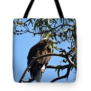 Eagle Under Cover Tote Bag