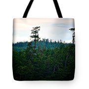 Eagle's Perch Tote Bag