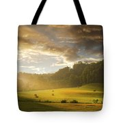 Early Am Fog And Stormey Light Tote Bag