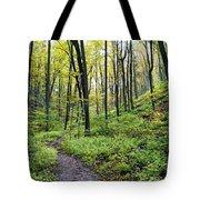 Early Autumn Hike Tote Bag