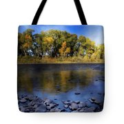 Early Fall At The Headwaters Of The Rio Grande Tote Bag by Ellen Heaverlo