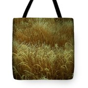Early Fall Frost Tote Bag