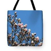 Early Flowering Magnolia Tote Bag