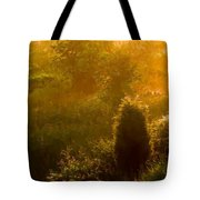 Early Gloaming Tote Bag by Ron Jones
