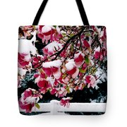 Early Magnolia Late Snow Tote Bag