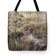 Early Morning Landscape Tote Bag