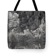 Early Morning Light Black And White Tote Bag