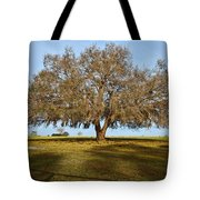 Early Morning Oak Tote Bag