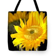 Early Morning Sunrays Tote Bag