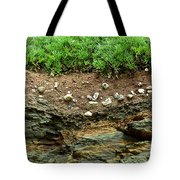 Earth Cross Section Tote Bag