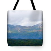 Earthly Curves Tote Bag